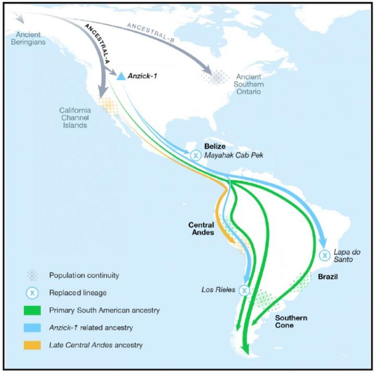 Bản đồ các tuyến di cư của con người vào châu Mỹ do nhóm Posth và Reich đăng trên tạp chí Cell. Nguồn: Cell