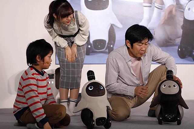 Robot Lovot mới được giới thiệu tại Nhật Bản.