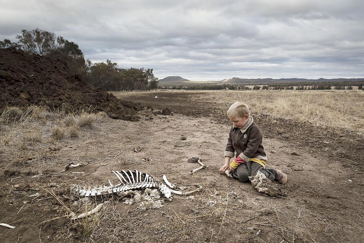 Biến đổi khí hậu làm gia tăng hạn hán tại Australia. Ảnh: Brook Mitchell