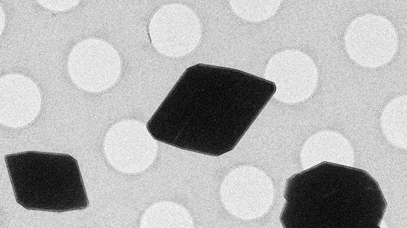 Các tinh thể được nhìn bằng kính hiển vi điện tử. Ảnh: Gonen Lab