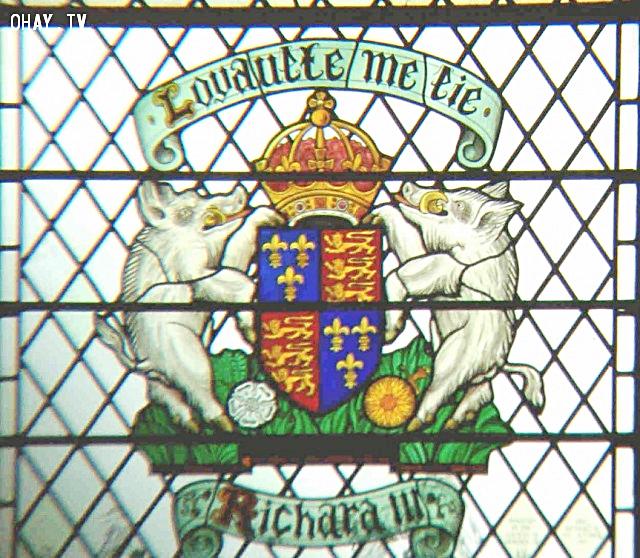 Huy hiệu của vua Anh Richard III (1452 – 1485). Ảnh: Wikimedia.