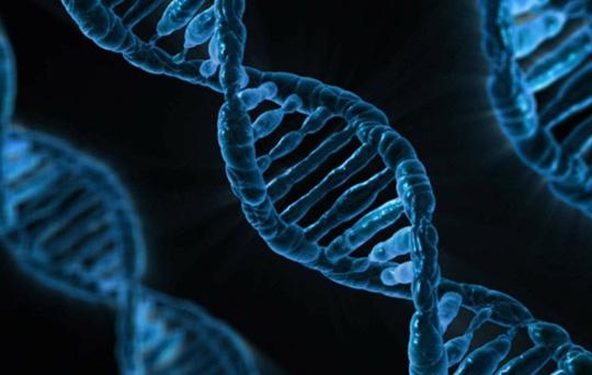 Các nghề nghiệm đòi hỏi thức khuya, trực đêm có thể làm hỏng DNA của bạn - ảnh: SPUTNIK