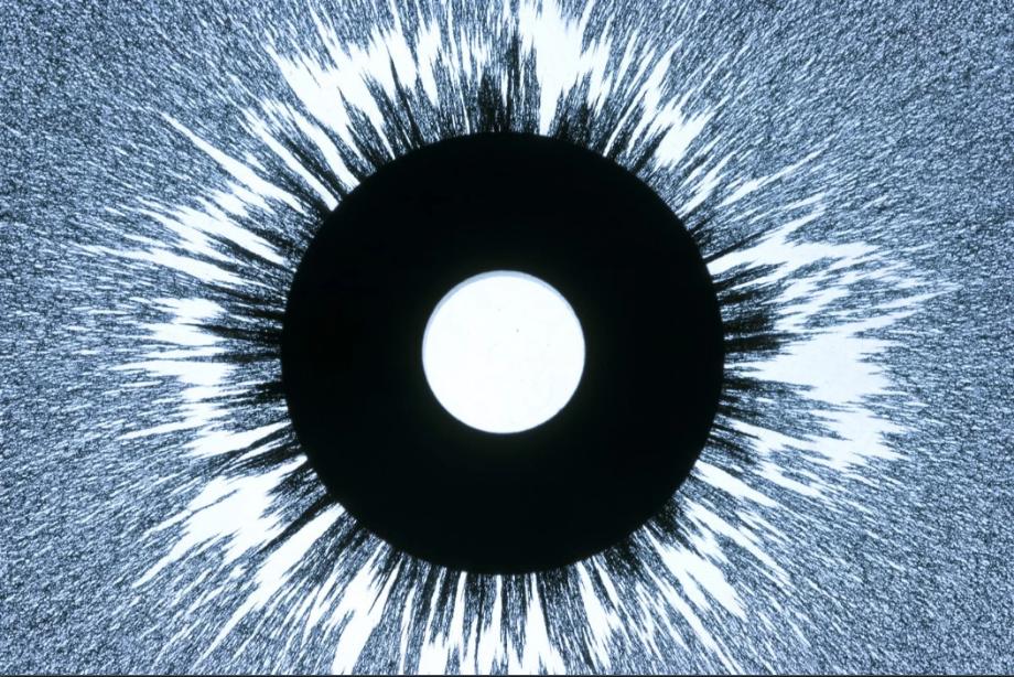 Các hạt mạt sắt sắp xếp thành cụm xung quanh nam châm hình tròn và từ trường của nó. Ảnh: Lawrence Lawry/Getty Images.