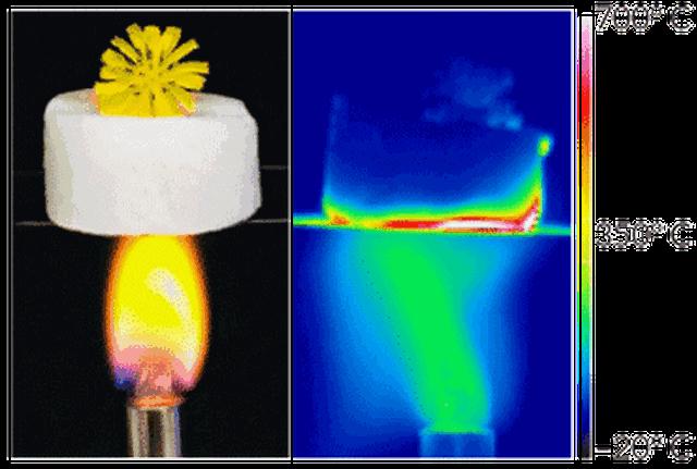Thí nghiệm cho thấy tính cách nhiệt rất cao của vật liệu mới. Ảnh: X. Xu Et Al/Science 2019.