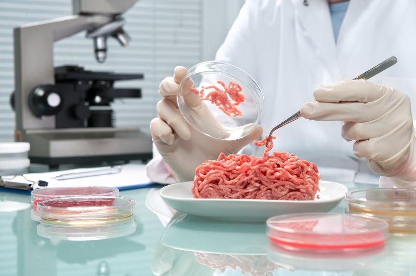 Nga sản xuất thịt ngựa nhân tạo