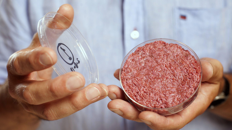 Tháng 3/2016, công ty Mỹ Memphis Meats cũng cho biết họ đã tạo ra viên thịt đầu tiên trong phòng thí nghiệm - Nguồn: Quartz