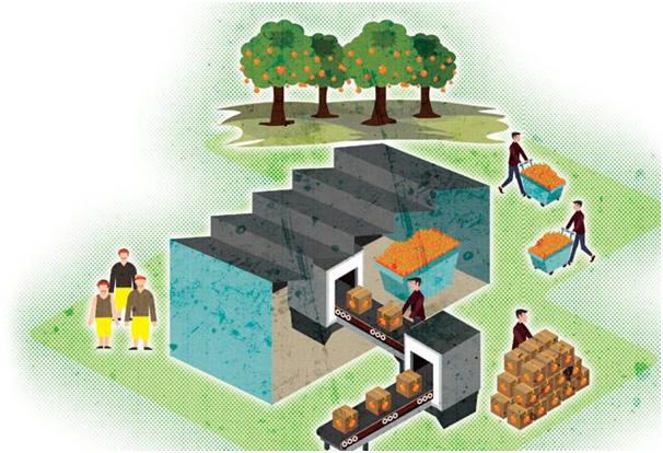 Chuỗi giá trị nông nghiệp | Ảnh: Raj Verma/Business Today