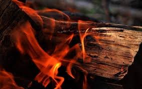 Vật liệu gỗ vừa chịu lực vừa chịu lửa sẽ bền hơn, cung cấp đủ thời gian quý giá để cứu người và tài sản - Ảnh : Pixels