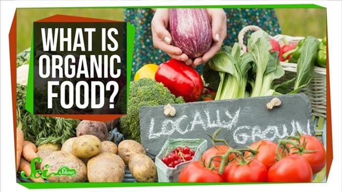 Thực phẩm Organic (hữu cơ) có thực sự tốt hơn cho sức khỏe?