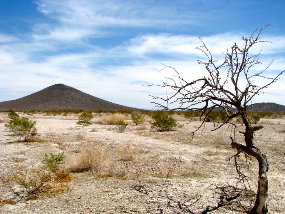 Vùng im lặng nằm trên sa mạc Chihuahuan ở Mexico. Ảnh: AP