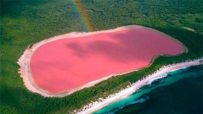 Tại sao hồ nước này ở Úc lại có màu hồng?