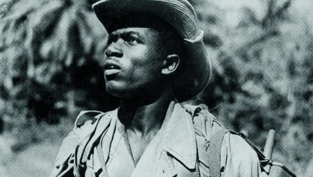 Người lính thuộc địa Tây Phi phục vụ trong quân viễn chinh Pháp tại Đông Dương. Được cử đến Đông Dương để bù đắp cho lực lượng lính Pháp thiếu hụt. Đến năm 1954 đã có đến hơn 19 nghìn lính Tây Phi tham chiến, trong đó ít nhất 800 lính bị bắt làm tù binh tại Điện Biên Phủ. 5500 người lính khác vĩnh viễn không bao giờ về lại quê hương. Nguồn: RFI.
