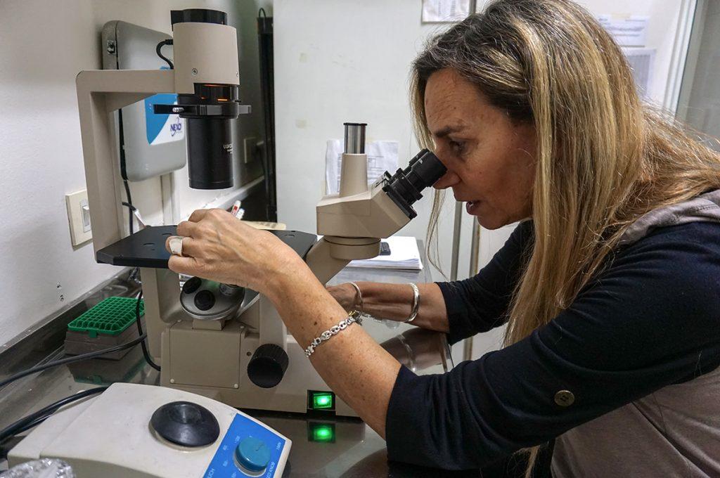 Claudia Capurro, nghiên cứu viên chính tại Hội đồng KH&CN quốc gia, sử dụng thiết bị trong phòng thí nghiệm tại Khoa Y sinh, trường Đại học Buenos Aires. Bà cho biết mình không thể xuất bản công trình trên tạp chí quốc tế uy tín vì không đủ hóa chất và thiết bị nghiên cứu. Nguồn: globalpressjournal.com