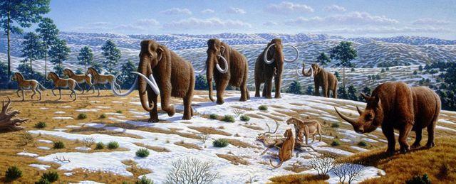 ác nhà khoa học lần đầu tiên đề cập đến sự bùng nổ tiến hoá của động vật trên Trái Đất liên quan đến sự thay đổi nồng độ oxy trong khí quyển.