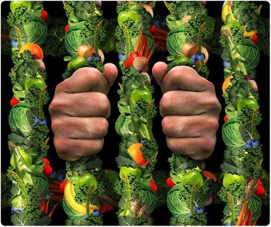 Kỹ lưỡng đến mức cố chấp chuyện ăn lành mạnh có thể là dấu hiệu bệnh - ảnh: MEDICAL-NEWS