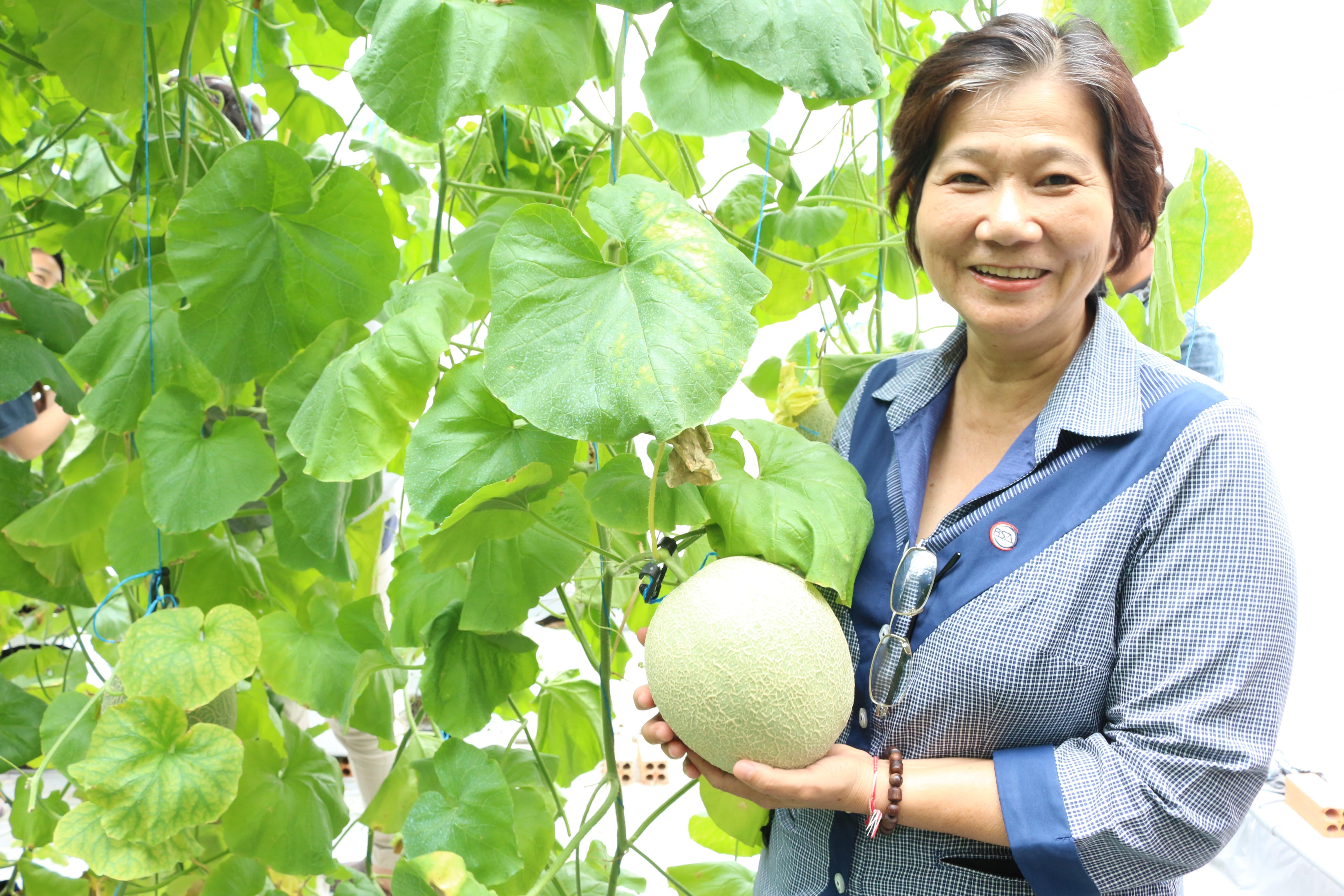 """Bà Vũ Kim Anh, thành viên Ban tổ chức cuộc thi """"Dự án khởi nghiệp sáng tạo thanh niên nông thôn năm 2019"""", PGĐ trung tâm BSA."""