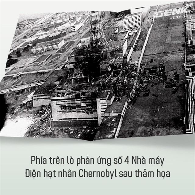 Từ địa ngục, Chernobyl nay trở thành thiên đường cho các loài động vật, có phải con người mới đáng sợ hơn cả hạt nhân? - Ảnh 2.