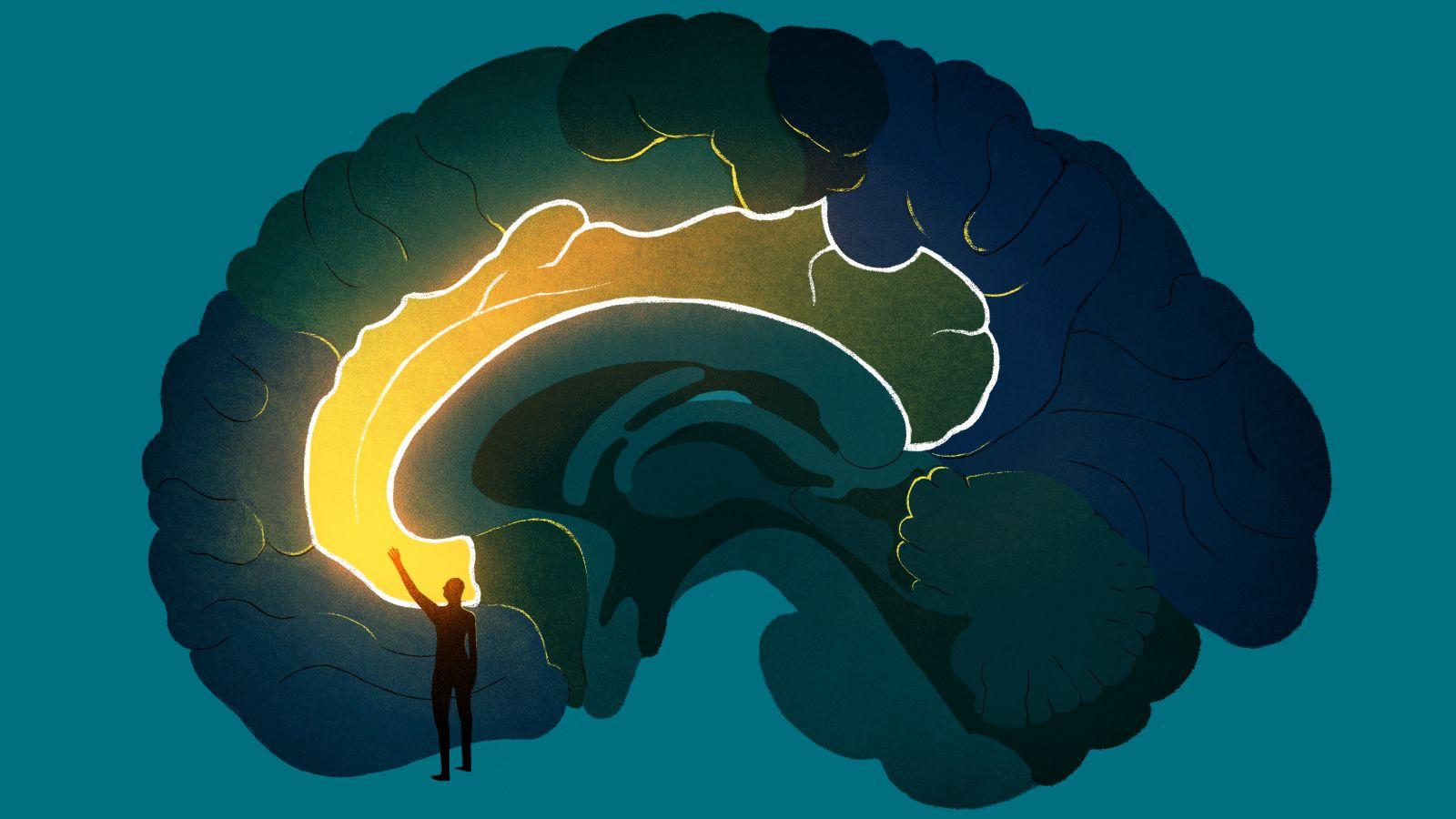 Cách thức não bộ lưu trữ thông tin có thể biến đổi do thói quen sử dụng internet. Ảnh: Global Health News Wire.