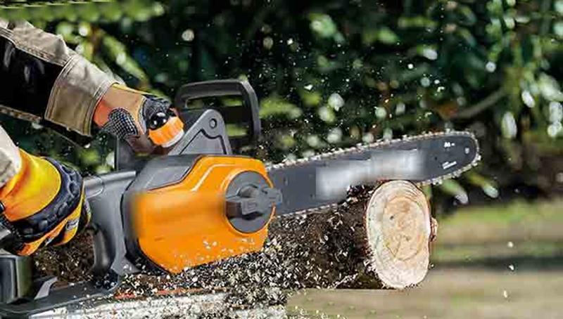 Sri Lanka cấm nhập khẩu cưa máy để bảo vệ rừng. Ảnh: Hiru News.