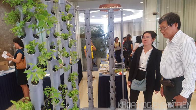"""""""Trồng rau bằng khí canh trụ đứng"""" - một trong những dự án tham gia Cuộc thi đang được ươm tạo tại Trung tâm Ươm tạo doanh nghiệp NN CNC"""