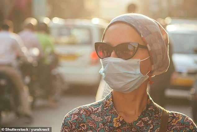 Chất gây ô nhiễm từ khí thải xe hơi và khí thải nhà máy là nguyên nhân gây ra nhiều ca viêm phế quản mạn tính và khí phế thũng - Ảnh: Shutterstock