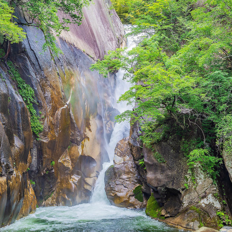 Ở Hẻm núi Gorge, có những cái cây đã bị đốn đi nhân danh tình yêu với thiên nhiên. Nguồn: INT