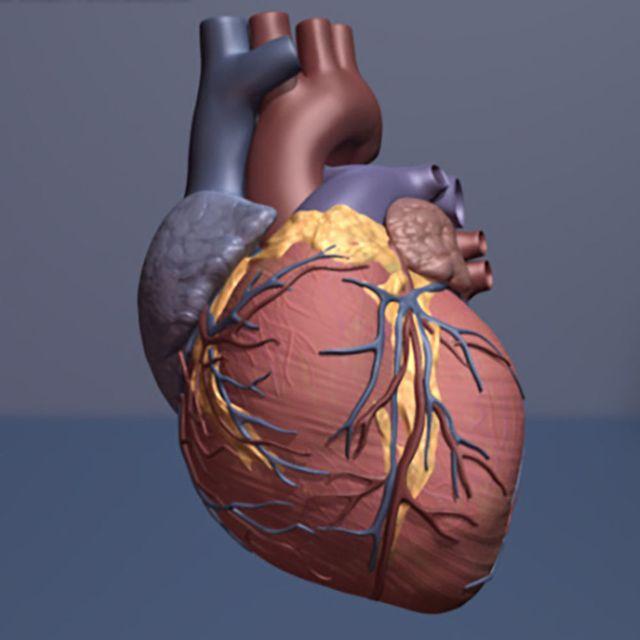 Phương pháp ghép tế bào gốc mới sẽ là cơ hội cho việc điều trị tim bị tổn thương.