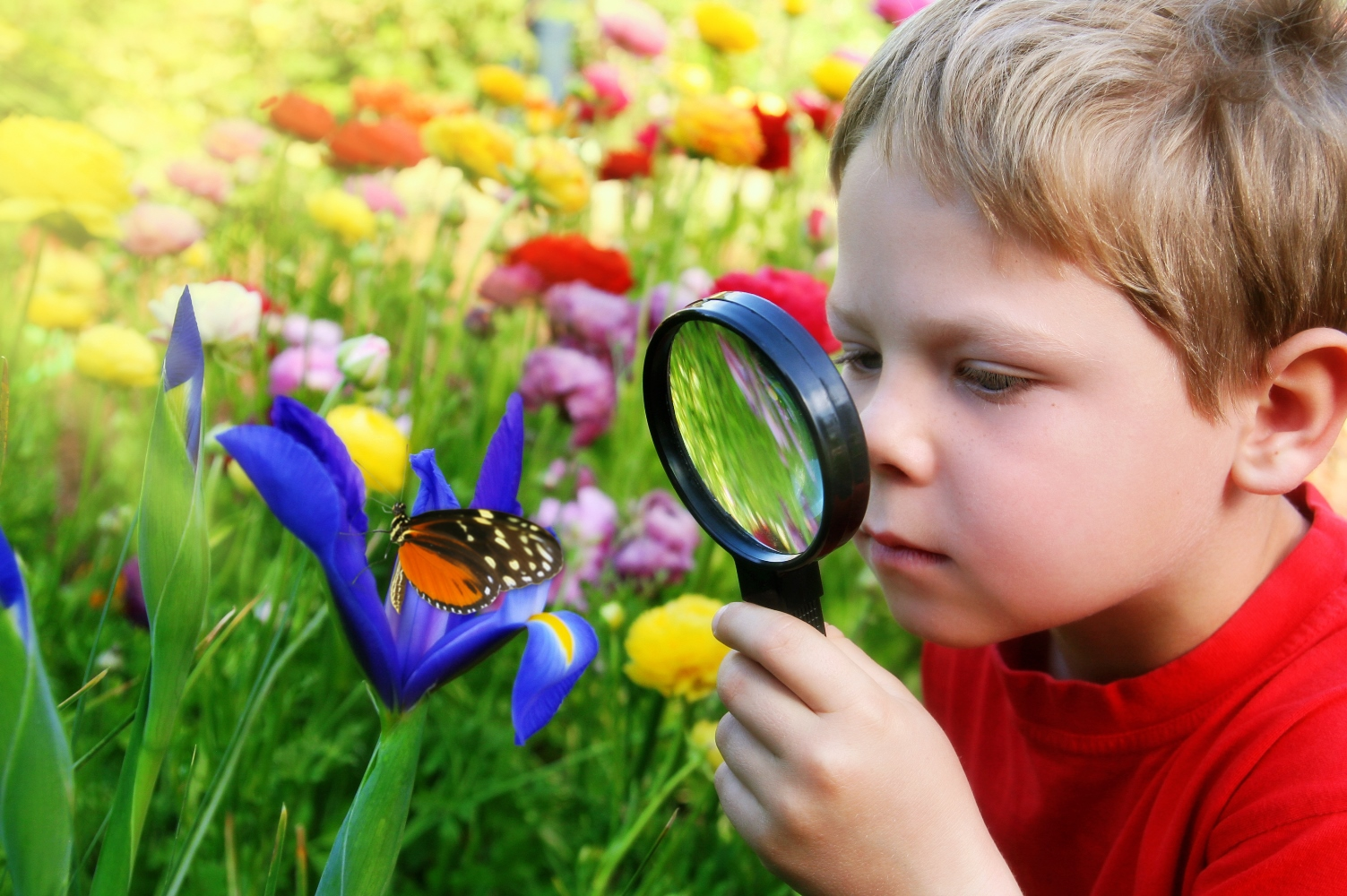 Giai đoạn trước khi đi học (từ 4-5 tuổi), trẻ đặt nhiều câu hỏi về thế giới xung quanh nhất.