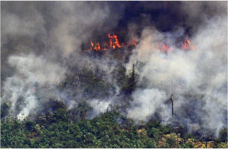 Cháy rừng ở Amazon đã kéo dài hàng tháng nay | Ảnh: AFP