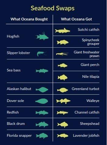 Một số loại cá được bán ở Mỹ có thể bị tráo đổi loại | Nguồn: Oceana