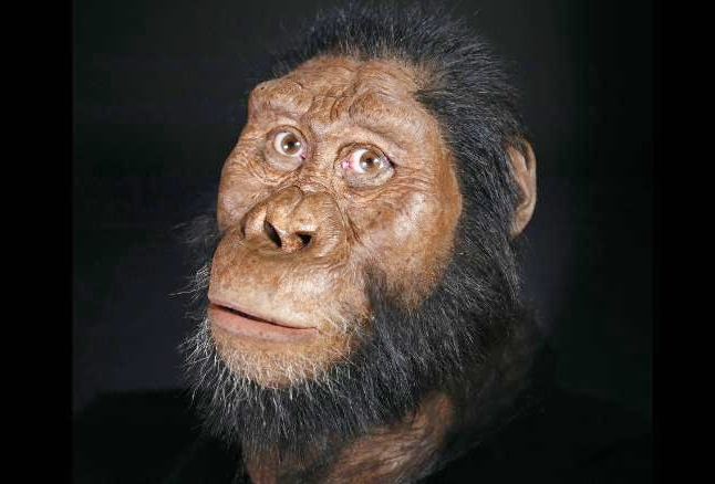 Gương mặt phục dựng của loài A. anamensis. Ảnh: CNN.