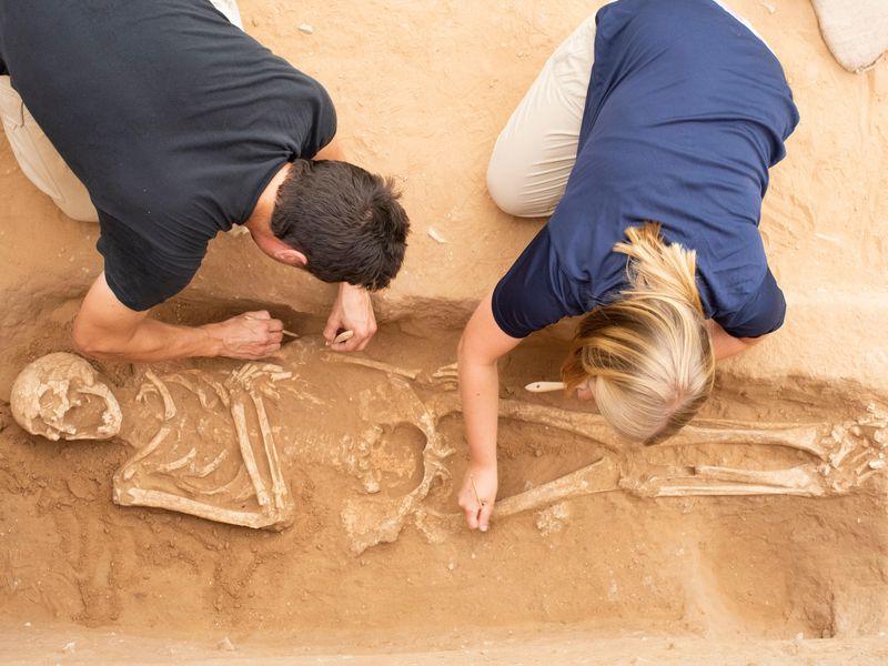Hài cốt được tìm thấy tại khu nghĩa trang Philistines ở Ashkelon, Israel. Ảnh: Melissa Aja.