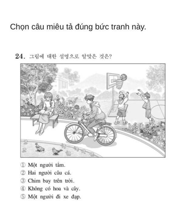 Thử sức với đề thi Tiếng Việt tại kỳ thi Đại học Hàn Quốc 2019: Nhiều câu hóc búa đánh lừa cả người Việt - Ảnh 10.