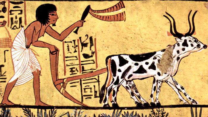 Nông dân Ai Cập cổ đại đang cày xới đất. Ảnh: Wikimedia.