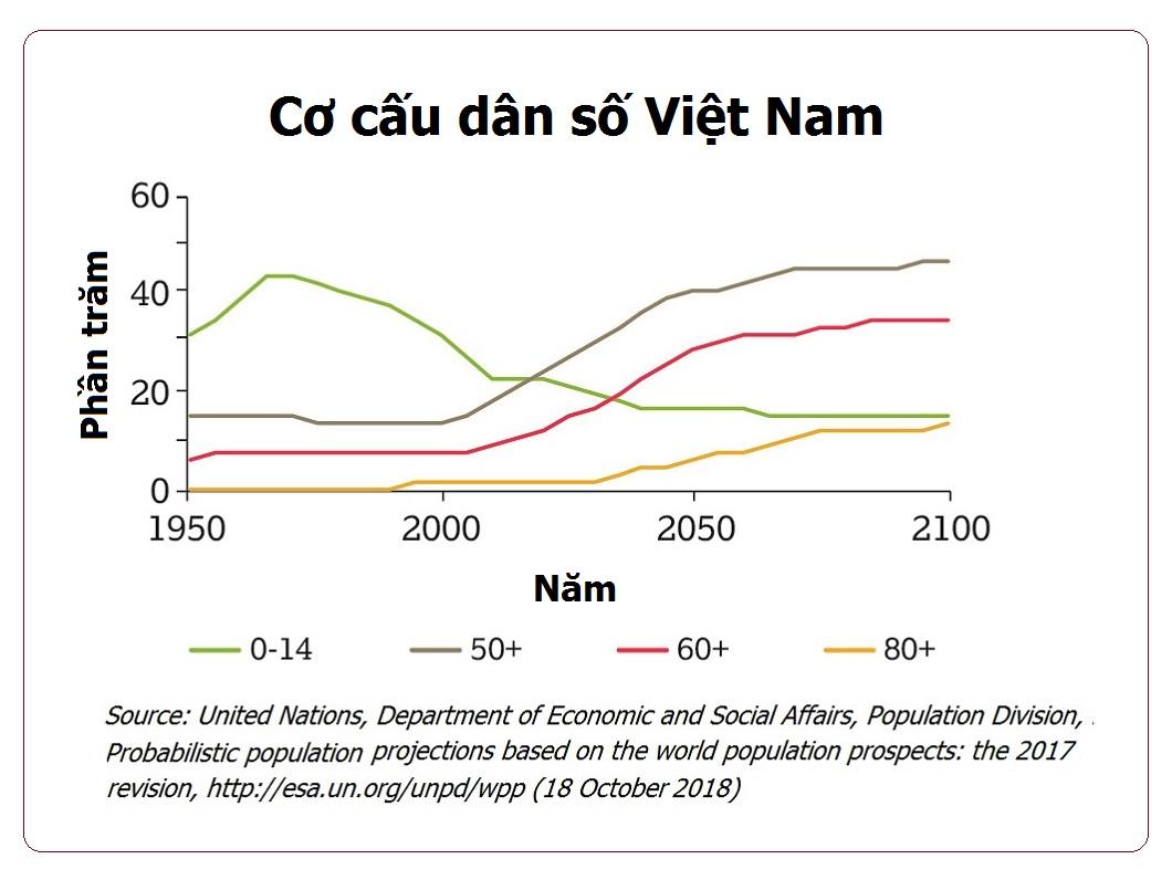 Cơ cấu dân số Việt Nam
