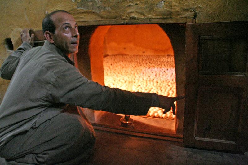 Công nhân làm việc trong trại sản xuất gà giống truyền thống Ai Cập. Ảnh: Lenny Hogerwerf/Atlas Obscura.