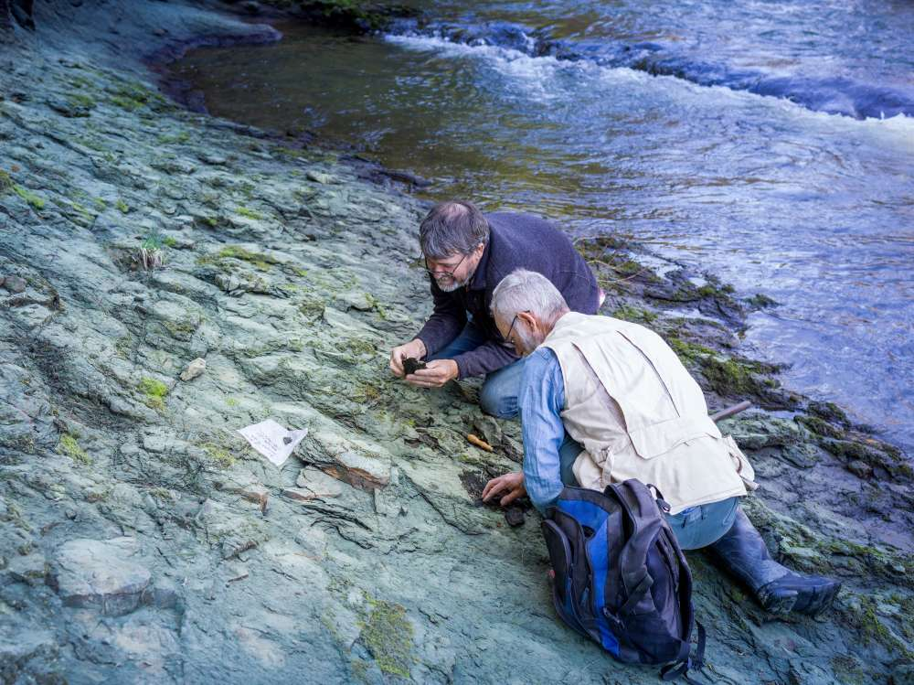 Tiến sĩ Paul Scofield và nhà cổ sinh vật học nghiệp dư Leigh Love thăm dò một đoạn bờ sông Waipara, gần khu vực phát hiện hóa thạch loài Protodontopteryx.