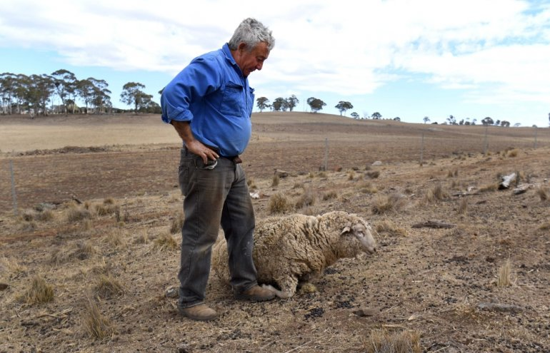Nền nông nghiệp phát triển bậc nhất thế giới của Úc đang bị ảnh hưởng nghiêm trọng bởi tình trạng hạn hán và thiếu nước, hệ quả của hiện tượng biến đổi khí hậu toàn cầu. Ảnh: AFP.