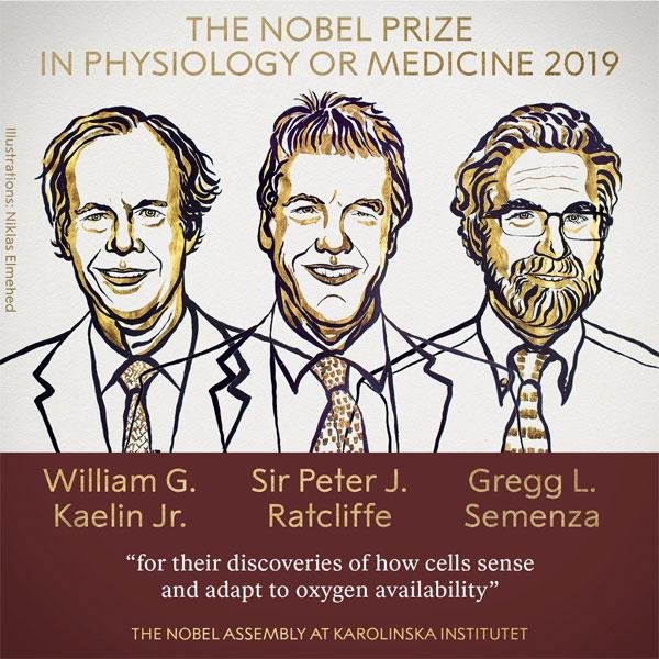 Ảnh: Nobel Prize