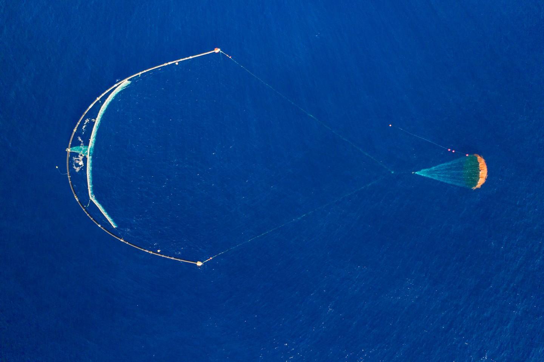 Hệ thống thu gom rác thải 001/B đang hoạt động rất hiệu quả sau một năm thử nghiệm. Ảnh: Ocean Cleanup.