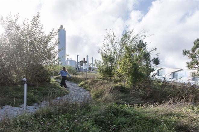 Trượt tuyết, leo núi trên nóc nhà máy đốt rác ở Đan Mạch - Ảnh 5.