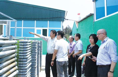Lãnh đạo Công ty Hidumi giới thiệu quy trình sản xuất tảo xoắn Spirulina với Ban Quản lý Dự án FIRST và Ngân hàng Thế giới.