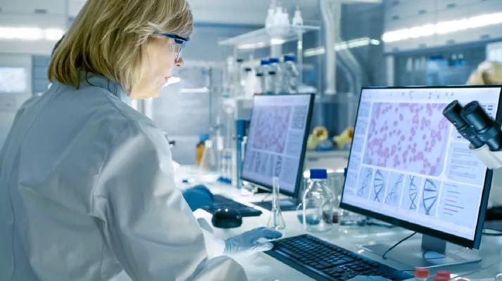Nghiên cứu DNA của virus tả lợn châu Phi.