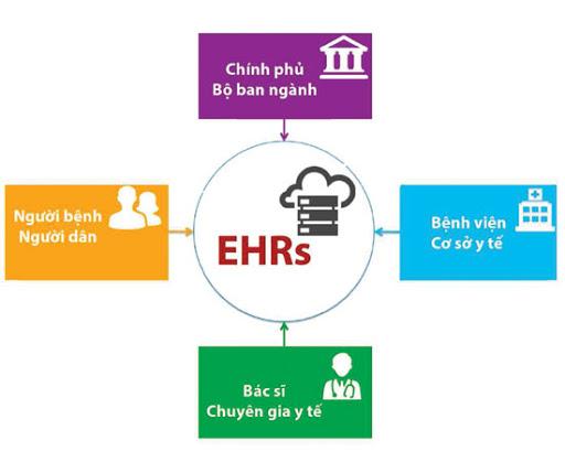 Hệ sinh thái mà dự án EHRs hướng tới.
