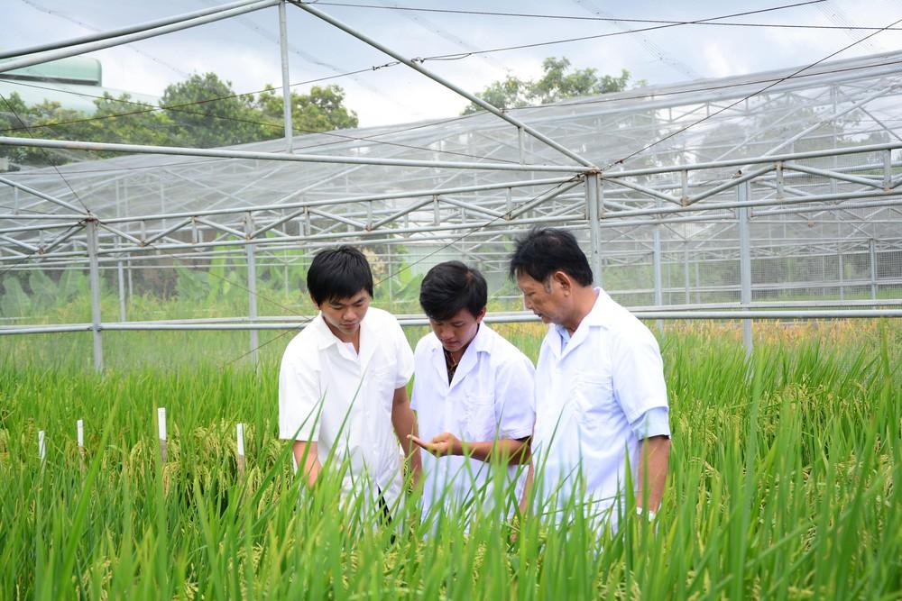 Lộc trời là một trong các doanh nghiệp áp dụng nhiều tiến bộ KHCN và liên kết tốt với người nông dân. Ảnh: Các kỹ sư của tập đoàn Lộc Trời. Nguồn: QĐND