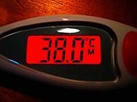 Hệ thống đo nhiệt độ từ xa do Nga phát triển có 2 phần. Một nhiệt kế nhãn dán tiếp xúc với cơ thể và một ứng dụng di động hiển thị nhiệt độ ngay cả ở khoảng cách xa - Ảnh: Flickr