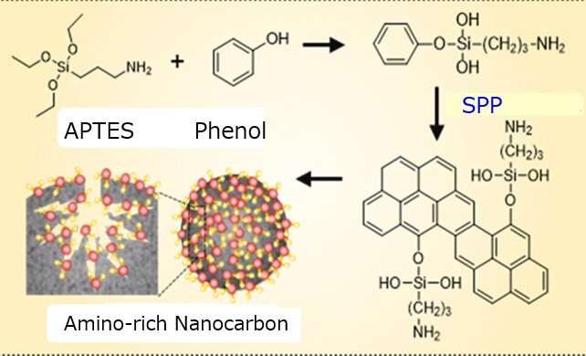 Quy trình tạo thành nanocarbon tích điện. Ảnh: Nagahiro Saito.