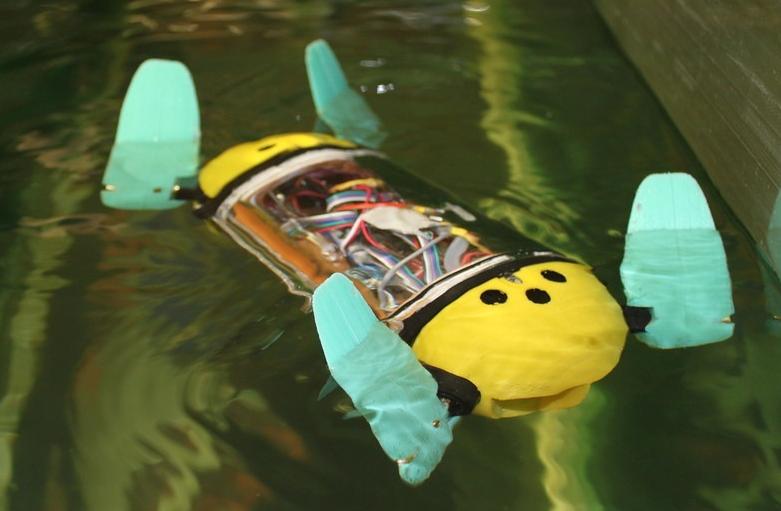 Robot rùa biển đang được thử nghiệm để theo dõi trại nuôi cá hồi. Ảnh: Đại học Công nghệ Tallinn.