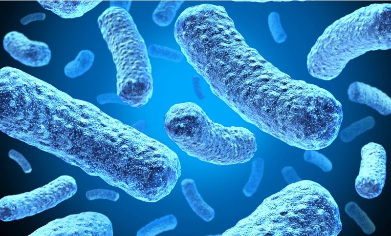 Các nhà nghiên cứu vừa phát triển một loại pin biohybrid lấy năng lượng từ vi khuẩn phát điện. Ảnh: