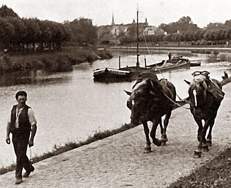 Thuyền kéo bằng sức ngựa tại Finowkanal, Đức, năm 1880. Ảnh: Wikimedia.